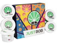 Kit Back2Work platinum avec 5 varietés de fleurs cbd de haute qualité