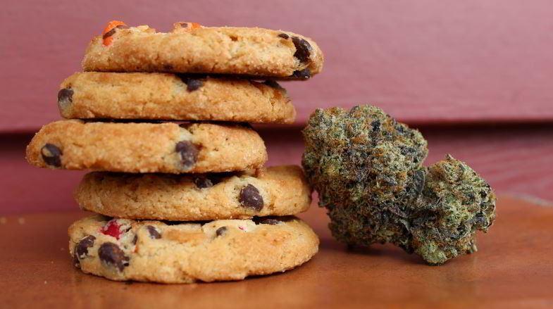 Biscuits au chanvre à usage alimentaire