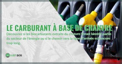Le carburant à base de chanvre fera-t-il partie du secteur de l'énergie ?